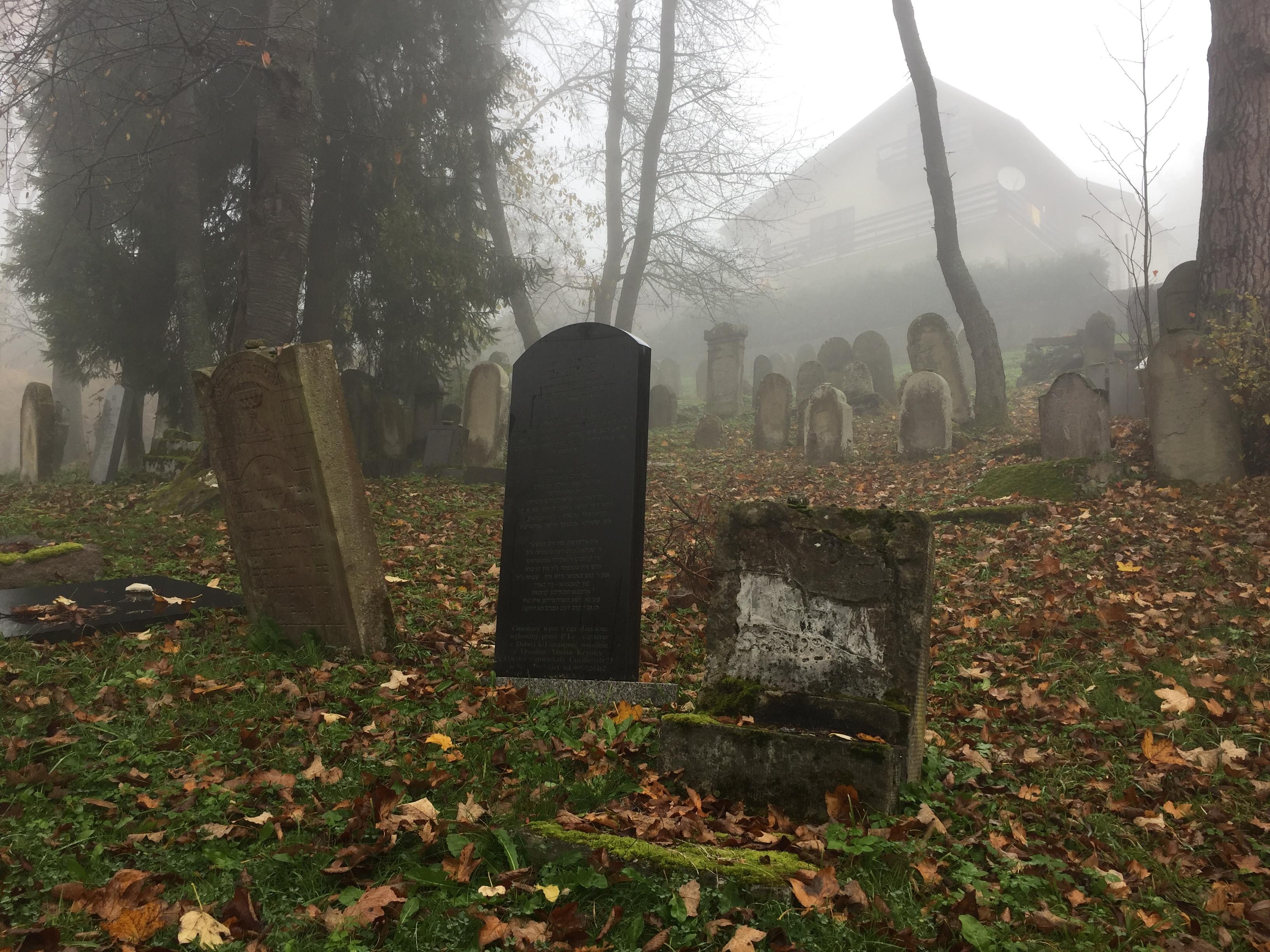 Cmentarz Żydowski w Krynicy-Zdroju